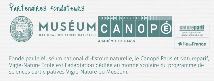 logos canope museum